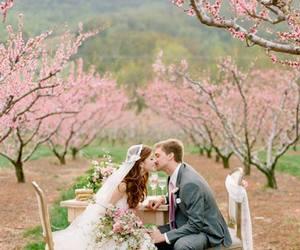 dress, kiss, and wedding image