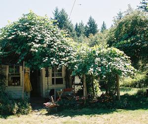 house, indie, and vintage image